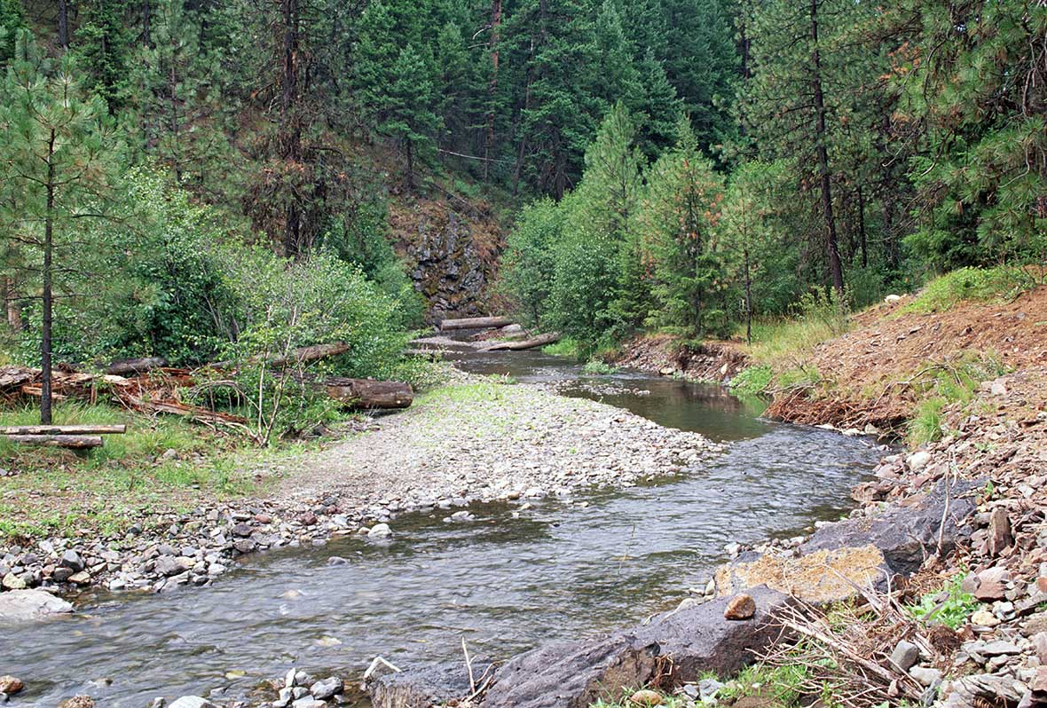 Ochoco National Forest Mill Creek Project Area