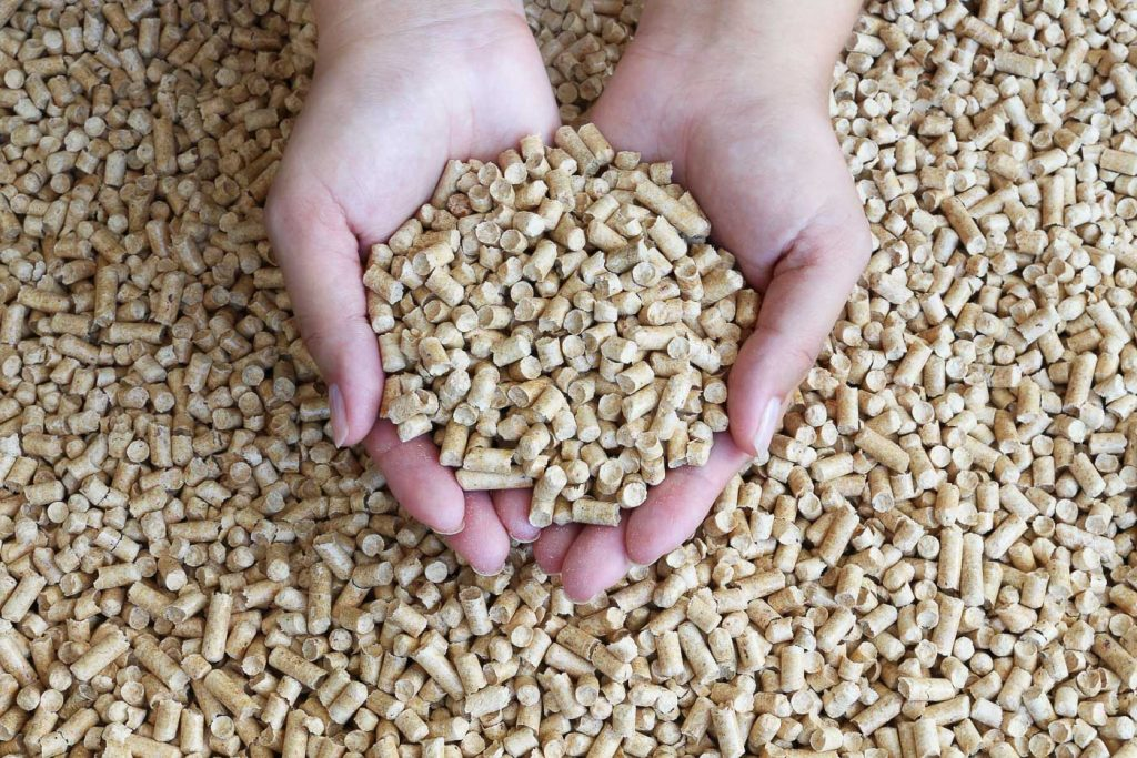 biomass pellets forest energy products