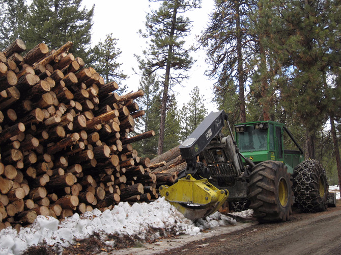 commercial logging ochoco national forest