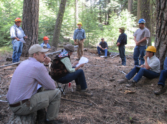Wolf Project Ochoco National Forest