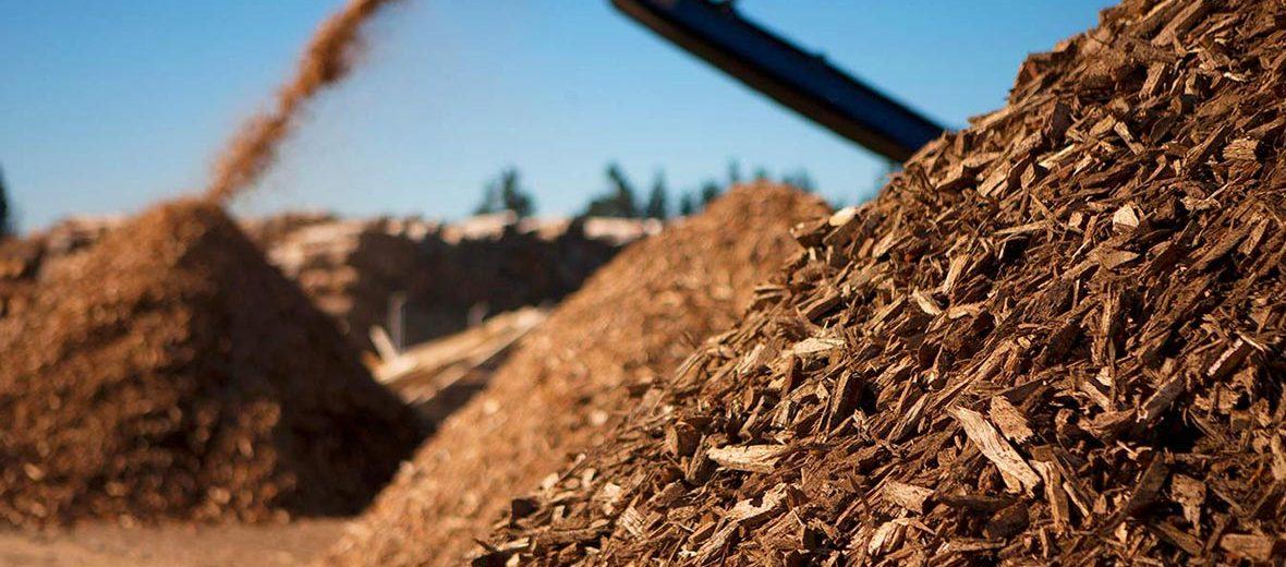 biomass summit oregon forest supply chain