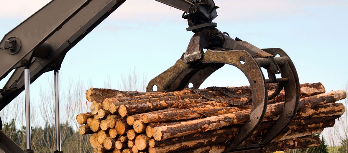 biomass small diameter forest products ochoco forest