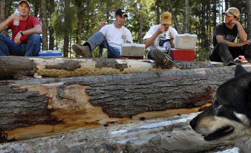 spokesman review logging jobs